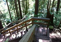 Baden-Powell Trail, Lynn Valley